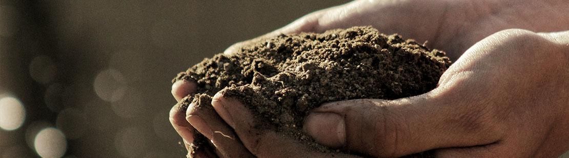 soil-functions-carbon