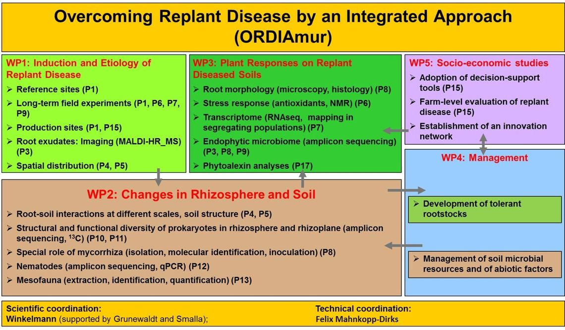 Overcoming Replant Disease by an Integrated Approach