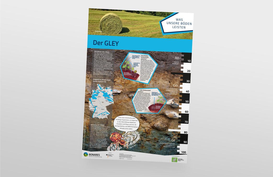 poster gley big