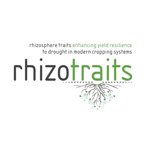 rhizotraits project logo