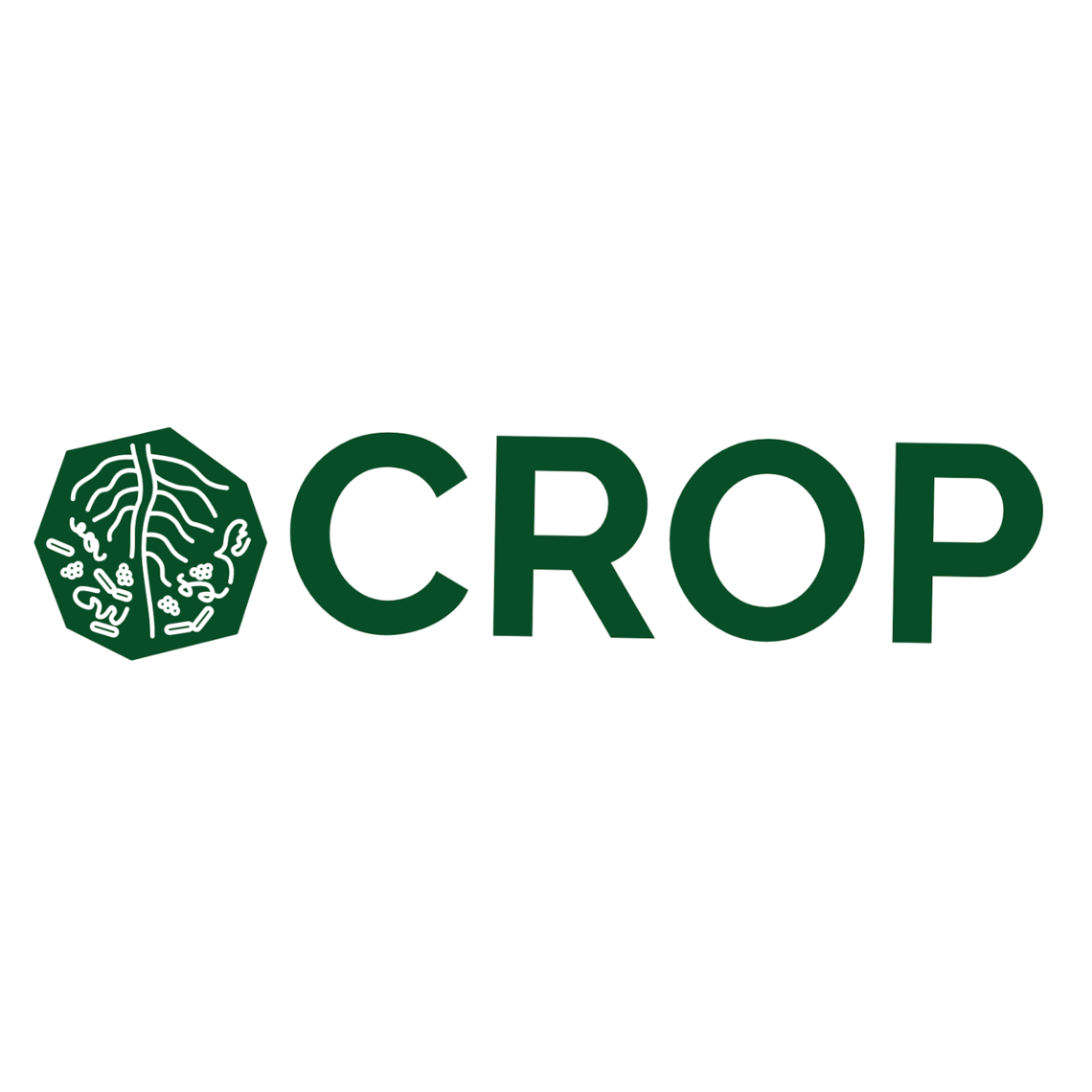 crop project logo rhizo