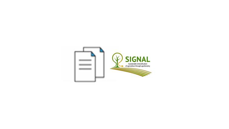 signal publikation